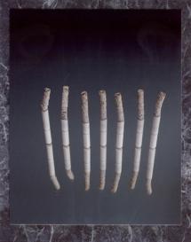 Cigarettes copy